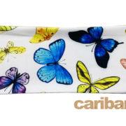 Butterflies Back